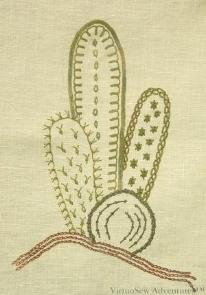Cactus Extension Design 1