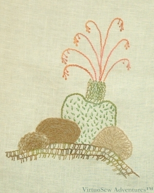 Cactus Extension Design 2