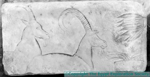 Antelope Carving - Photo copyright The Egypt Exploration Society